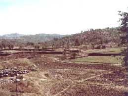 Old Dervan